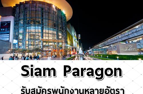 Siam Paragon รับสมัครพนักงานหลายอัตรา (13,300 – 15,100 บาท)