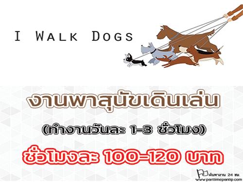 งาน Part Time พาสุนัขเดินเล่น (ชั่วโมงละ 100-120 บาท)