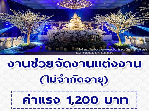 รับสมัครคนช่วยจัดงานแต่งงาน (ค่าแรงงานละ 1,200 บาท)