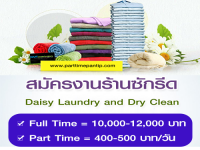 Daisy Laundry and Dry Clean