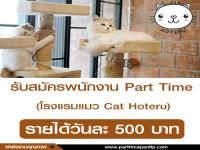 Part Time โรงแรมแมว Cat Hoteru