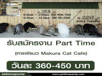 งาน Part Time ประจำร้านคาแฟ่แมว Makura Cat Cafe