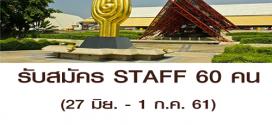 รับสมัคร STAFF งาน Clearance Sales (วันละ 600 บาท)