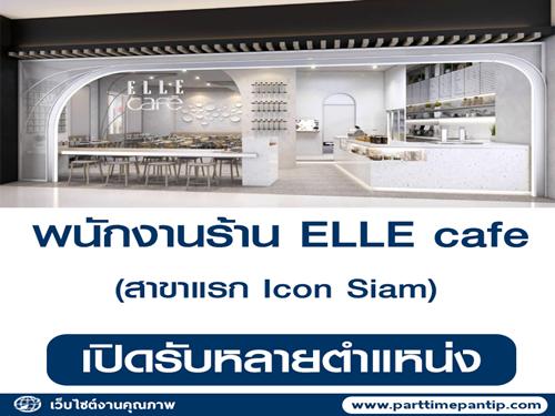 รับสมัครพนักงานประจำร้าน ELLE cafe