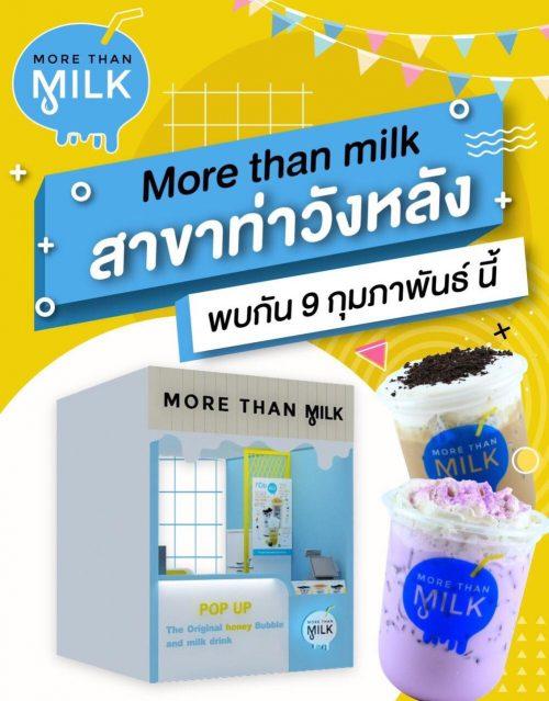 รับสมัครพนักงานประจำร้าน More Than Milk