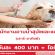 รับสมัครพนักงานอาบน้ำสุนัขและแมว