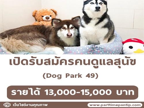Dog Park 49 รับสมัครคนดูแลสุนัข
