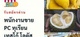 รับสมัครด่วนพนักงานขายผลไม้ ประจำ Tesco Lotus