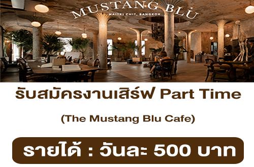 รับสมัครงานเสิร์ฟ Part Time ประจำ The Mustang Blu Cafe