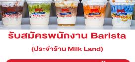 รับสมัครพนักงาน Barista ประจำร้าน Milk Land