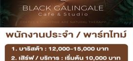 งาน Part Time – Full Time ร้าน Black Galingale Cafe & Studio