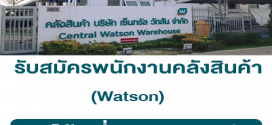 Watson รับสมัครพนักงานคลังสินค้า (รายได้เฉลี่ย 517 บาท/วัน)